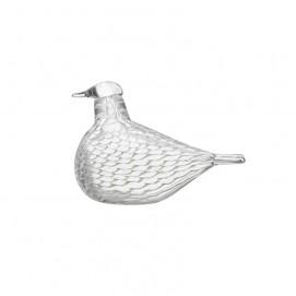 중재자 비둘기